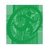 Ridgeland Foot Logo